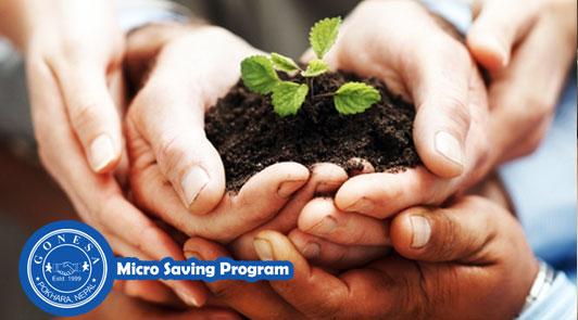 Micro Saving Program